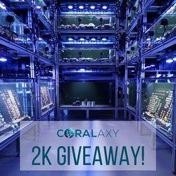 🥳 Wohoo - jetzt sind es tatsächlich schon 2000 Menschen, die uns hier folgen! Danke! . Auch wenn das mit dem Giveaway vielleicht ein blöder Werbequatsch ist, wollen wir uns doch irgendwie bei Euch bedanken. Wir freuen uns, dass ihr die Entwicklung von Coralaxy verfolgt, uns regelmäßig Euer...